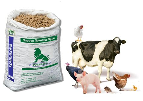 animal feed cp foods