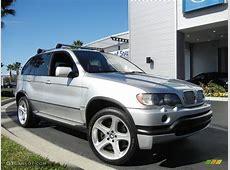 Titanium Silver Metallic 2003 BMW X5 46is Exterior Photo