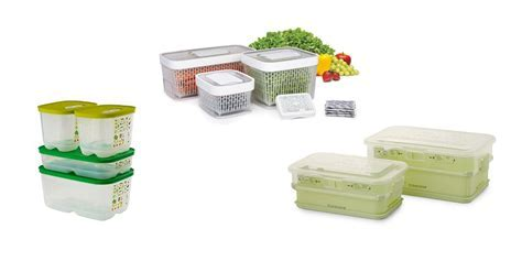 Produce Keeper Reviews   OXO GreenSaver Produce Keeper