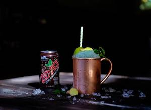 Moscow Mule Gin : no sugar added ginger root beer gin moscow mule cocktail recipes zevia ~ A.2002-acura-tl-radio.info Haus und Dekorationen