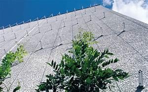 Treillis Pour Plantes Grimpantes : greencable vgtalisation de faade support de plantes ~ Premium-room.com Idées de Décoration