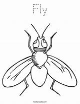 Fly Coloring Pages Sheets Printable Insect Print Preschool Tracing Flies Outline Colouring Twistynoodle Template Cartoon Worksheets Clipart Guy Animals Outlines sketch template