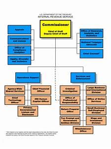 organizational chart template doc - organizational chart template 59 free templates in pdf