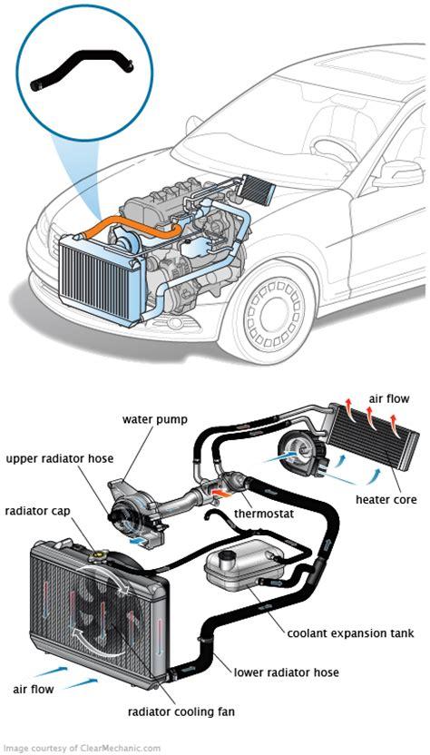 upper radiator hose