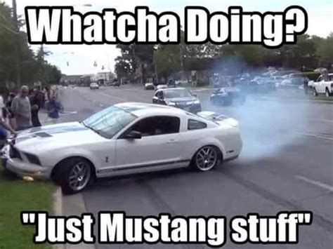 Ford Mustang Memes - hilarious mustang memes have broken the internet here are our favorites carbuzz