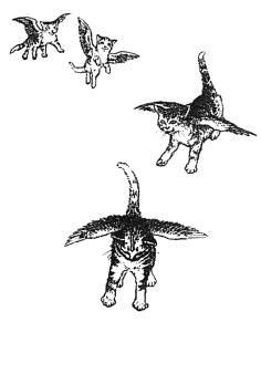 """""""Catwings"""" (Catwings #1) by Ursula K. Le Guin, Illustrated by S.D. Schindler (1988) 