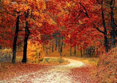 seasons start summer solstice fall equinox