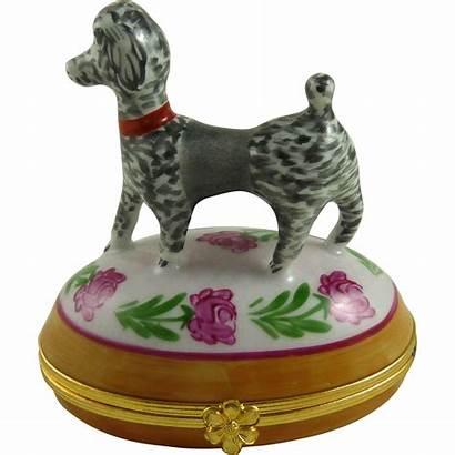 Poodle Porcelain Dog Limoges Box Ornaments Rubylane