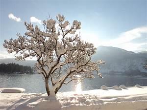 Sonne Im Winter : hotel in sankt gilgen am wolfgangsee urlauben sie bei ~ Lizthompson.info Haus und Dekorationen