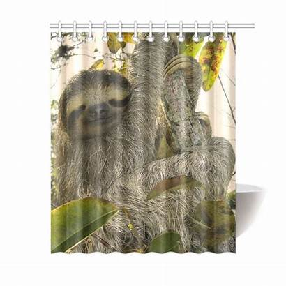 Sloth Curtain Shower Awesome X72 Animal