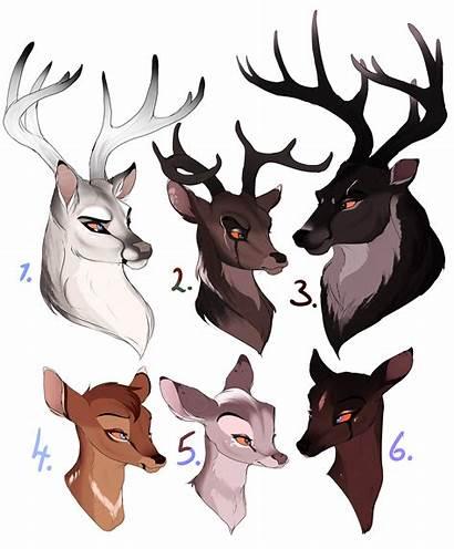 Deer Deviantart Drawing Drawings Animal Bambi Draw