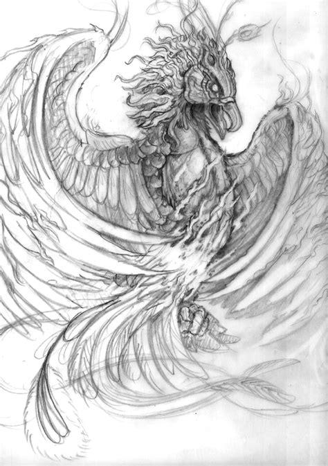 Phoenix | Phoenix tattoo, Phoenix tattoo design, Sketches