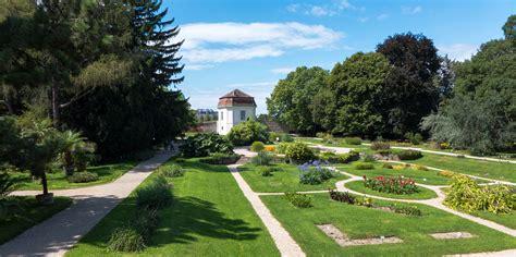 Botanischer Garten Basel Führung by Botanischer Garten