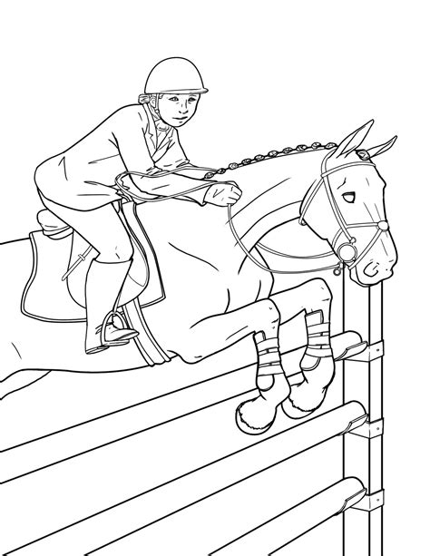 laura ambrosiano pony club coloring book