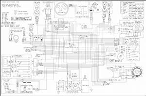 Polari Big Bos Wiring Diagram