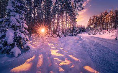 scarica sfondi inverno foresta neve tramonto sera