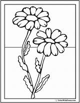 Daisy Coloring Pages Flower Spring Glass Painting Flowers Colorwithfuzzy Outline Designs Cute Paint sketch template