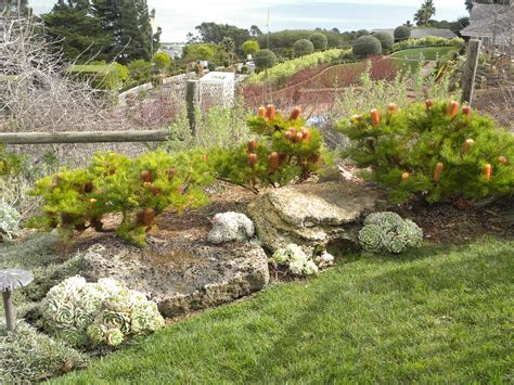 using boulders in landscaping how to choose boulders for any garden the human footprint