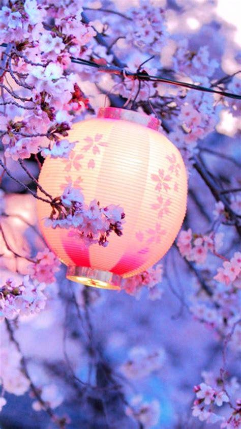 night lantern flower trees iphone   wallpaper