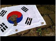 韓国旗を燃やしてみた burning korean flag YouTube