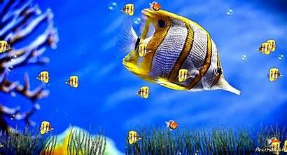 Screensavers Animated Windows Desktop Christian 3d Wallpapers