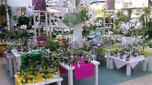 Verkaufsoffener Sonntag Weiden : dehner weiden deko blumenschmuck pflanzen oberpfalzecho ~ A.2002-acura-tl-radio.info Haus und Dekorationen