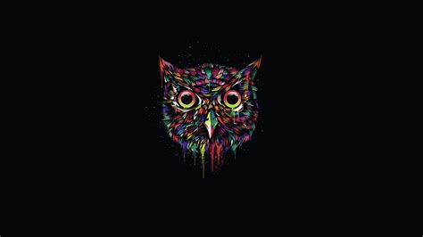 Background Digital Owl Wallpaper by Ovo Owl Wallpaper 78 Images