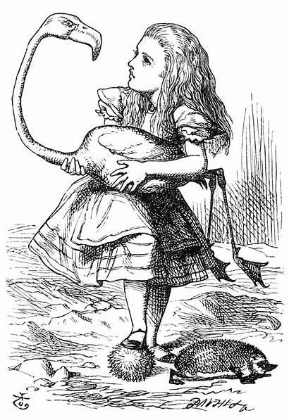 Fiction Alice Tenniel John Wikipedia Commons