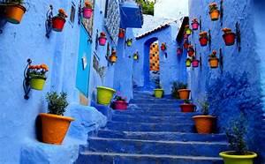 Flowerpots Outside Houses in South America Full HD ...