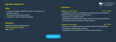big data sample resume costumepartyrun