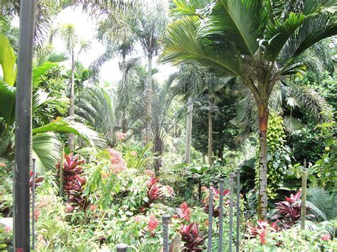 Botanischer Garten Singapur by Singapur Reisef 252 Hrer Reisetipps Tourismus
