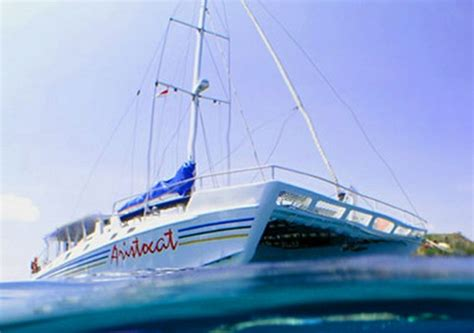 Private Catamaran Cruise Bali by Bali Sea Cruises Bali Island Cruise