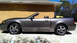 2003 Ford Mustang Cobra Convertible ~ For Sale American Muscle Cars