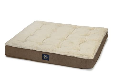serta super pillowtop dog bed mocha home woot