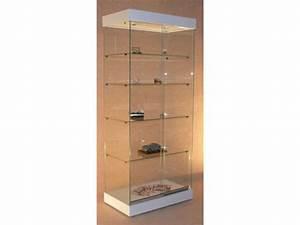 Vitrine Pour Petit Objet : vitrines d 39 expositions fournisseurs industriels ~ Zukunftsfamilie.com Idées de Décoration
