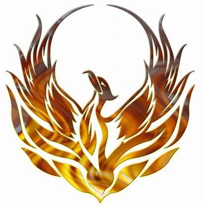 Phoenix Clipart Decal Transparent Creature Bird Legendary