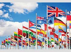 International Visitors Programme TFHC