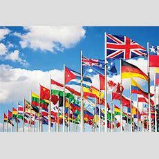 International Business  Bsc (hons)  Canterbury  The University Of Kent