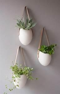 Blumentöpfe Für Die Wand : h ngende zimmerpflanzen und balkonpflanzen umweltgerechtes haus ~ Indierocktalk.com Haus und Dekorationen
