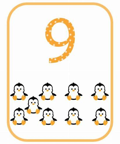 Flashcards Number Flashcard Numbers Flash Cards Alphabet