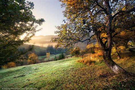 Golden autumn in the Ukrainian Carpathians · Ukraine ...
