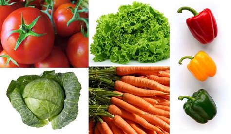 Urban Vegetable Farming  How To Make Passive Income From