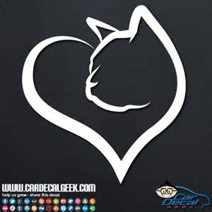 cat stickers cat vinyl car decal sticker