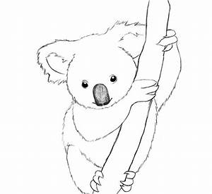 How To Draw A Koala Easy Step By Step | Bear paintings ...