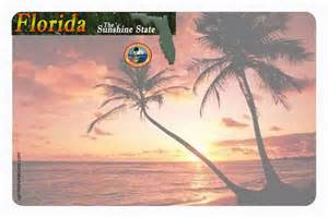 Florida Drivers License Template