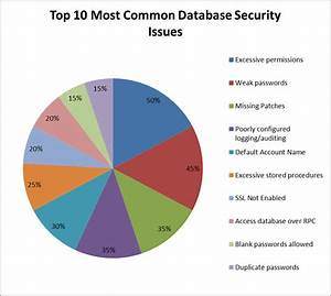 Top 10 Common Database Security Issues