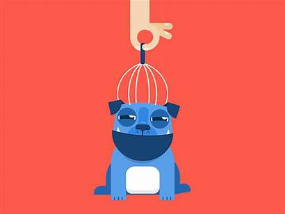 Gifs Molly Animated Pop Dribbble Dog Motion