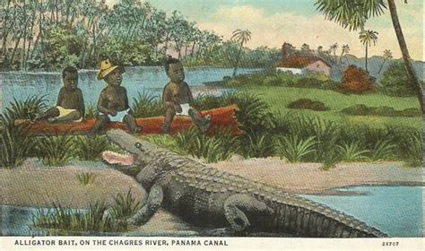 fast history  black babies  alligator bait
