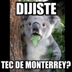 Memes Tec - meme koala dijiste tec de monterrey 724452