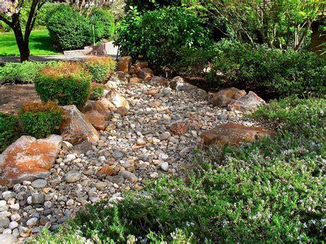 rock garden shrub clipart clipground